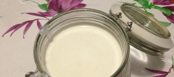 yogurt bimby denso