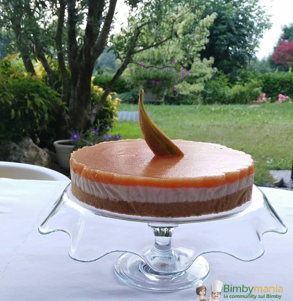 cheesecake al melone 4