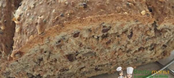 pane integrale bimby con semi vari